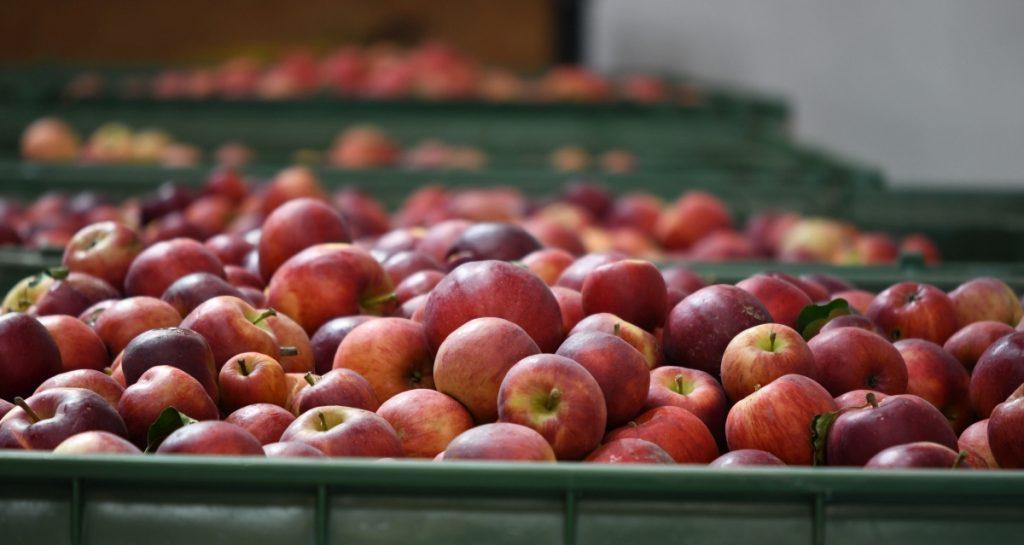 aepfel in kiste